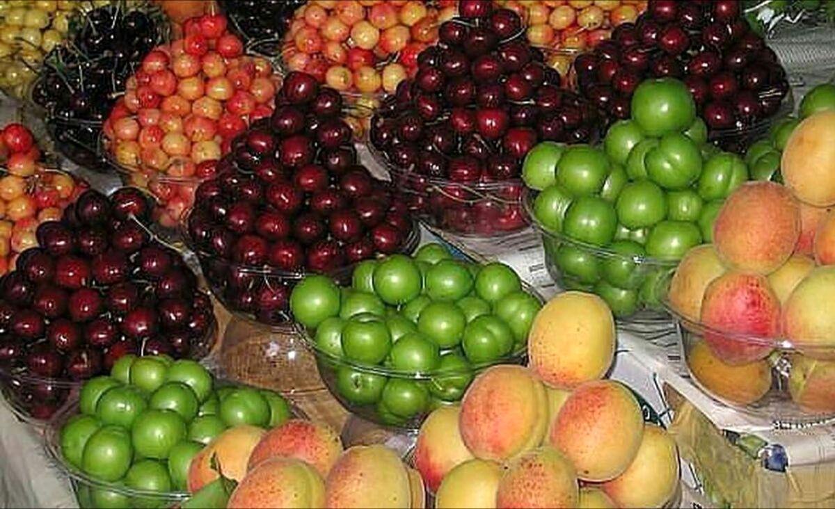 میوه های کم کالری و سرشار از فایده کدامند؟