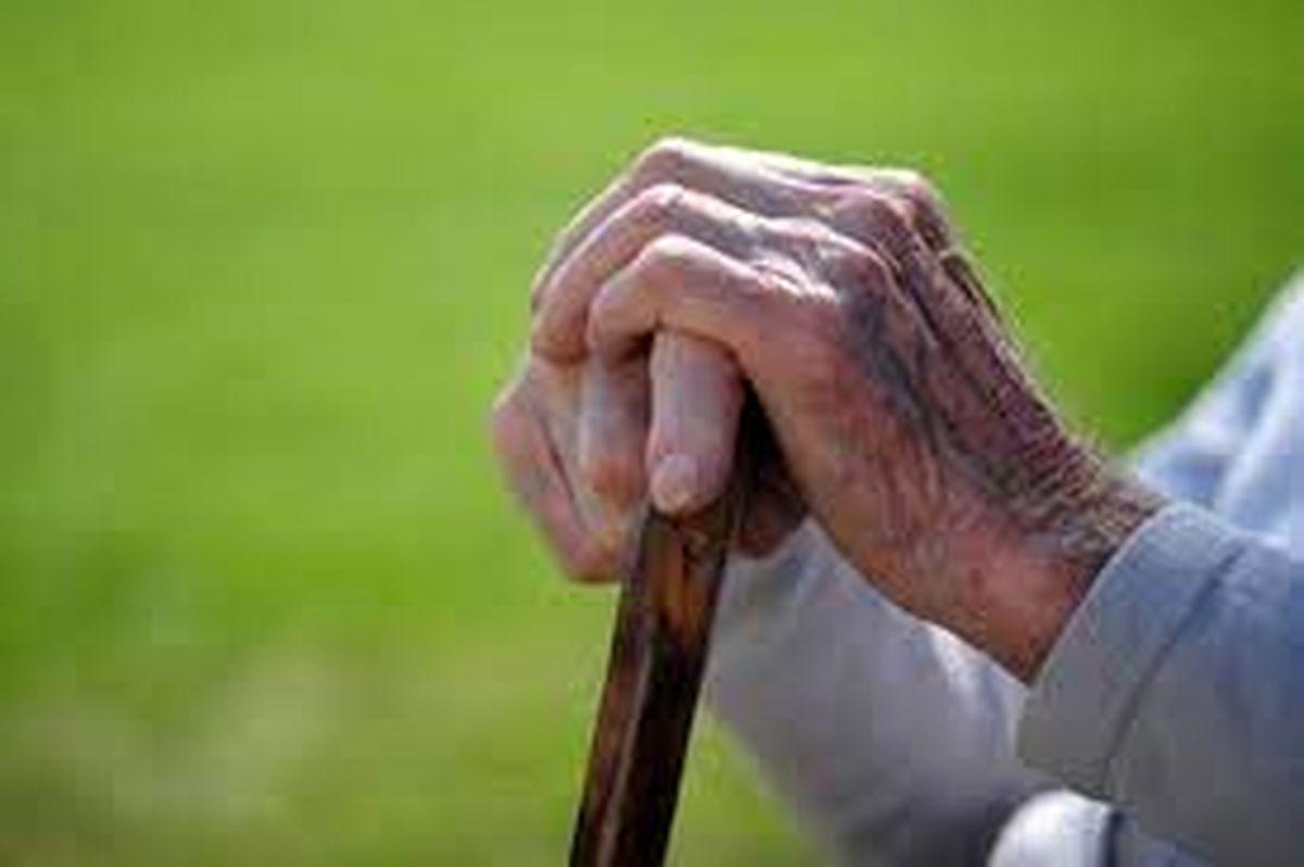 سالمندی، سونامیِ پیش روی کشور